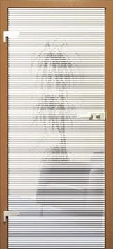 drzwi szklane pol skone